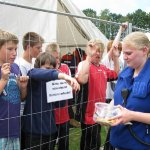 Zeltlager in Ofenerdiek, 09.07.-16.07.2011